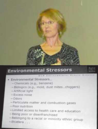 Dr. Winnie Hamilton, CIP speaker, with chart showing how many factors are involved in environmentally causes sickness.
